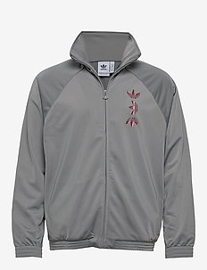ZENO TT - basic sweatshirts - chsogr/scarle