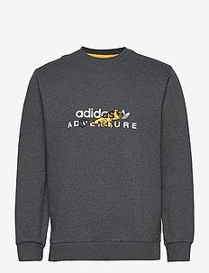 ADV GRAPHICCREW - sweatshirts - dgreyh