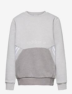 SPRT Collection Crew Sweatshirt - sweatshirts - gretwo/dovgry