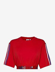 Adicolor Primeblue Tricolor Cropped T-Shirt W - crop-topit - scarle