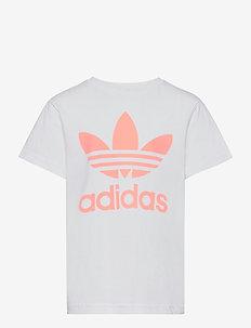 Trefoil Tee - kortærmede t-shirts - white/hazcor