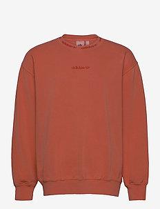 Dyed Crewneck Sweatshirt - basic sweatshirts - hazcop