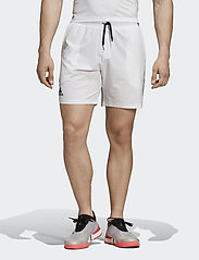 adidas Tennis - Club Shorts 7-Inch - chaussures de course - white - 0
