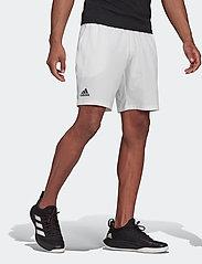 adidas Performance - CLUB STRETCH WOVEN SHORTS - trainingsshorts - white - 0