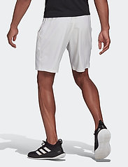 adidas Performance - CLUB STRETCH WOVEN SHORTS - trainingsshorts - white - 3