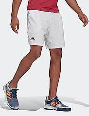 adidas Performance - ERGO SHORTS - trainingsshorts - white - 0