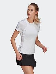 adidas Performance - Club Tennis Tee - t-shirts - white - 0