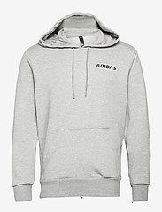 adidas Performance - GRAPHIC HOODIE - bluzy z kapturem - grey - 1