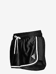 adidas Performance - Club Tennis Shorts - training korte broek - black - 3