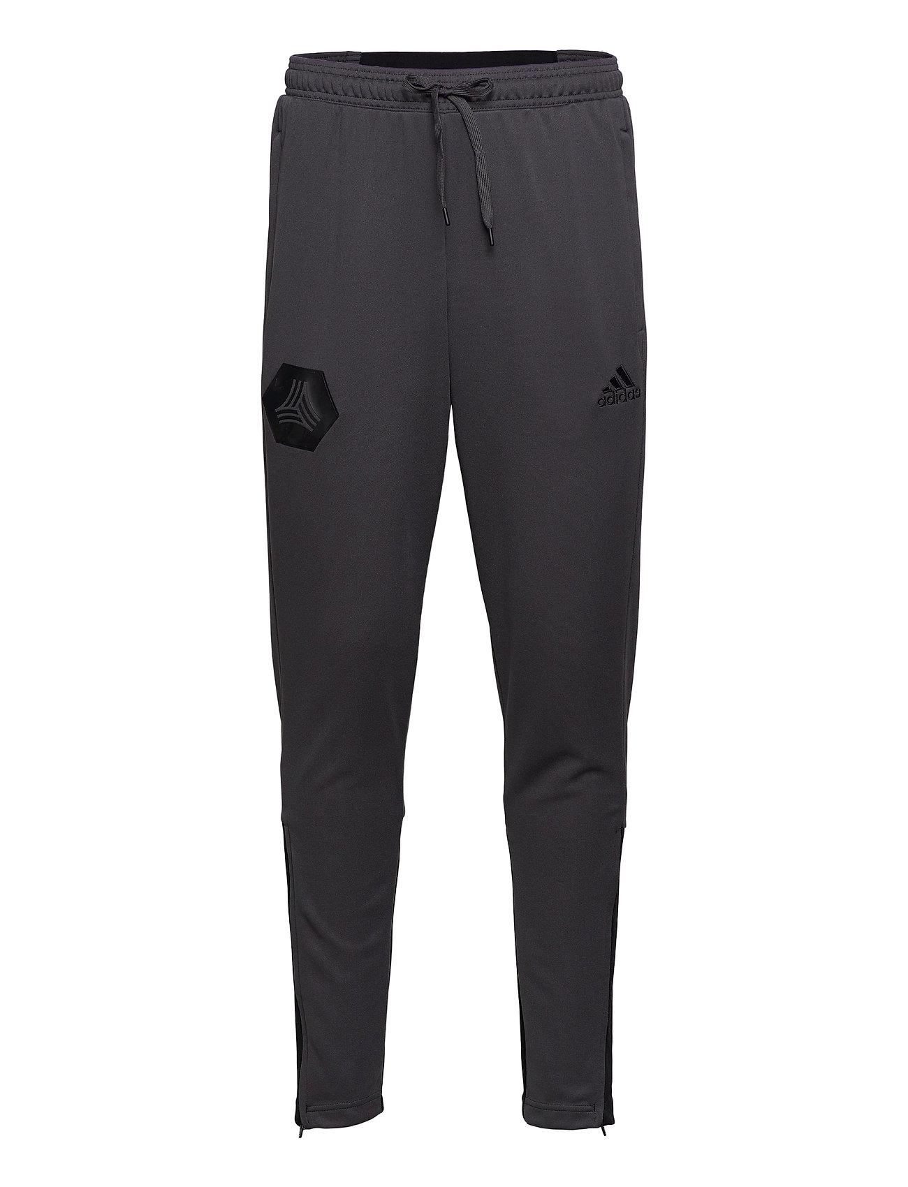 Image of Tan Tr Pant Sport Pants Grå Adidas Performance (3431377091)