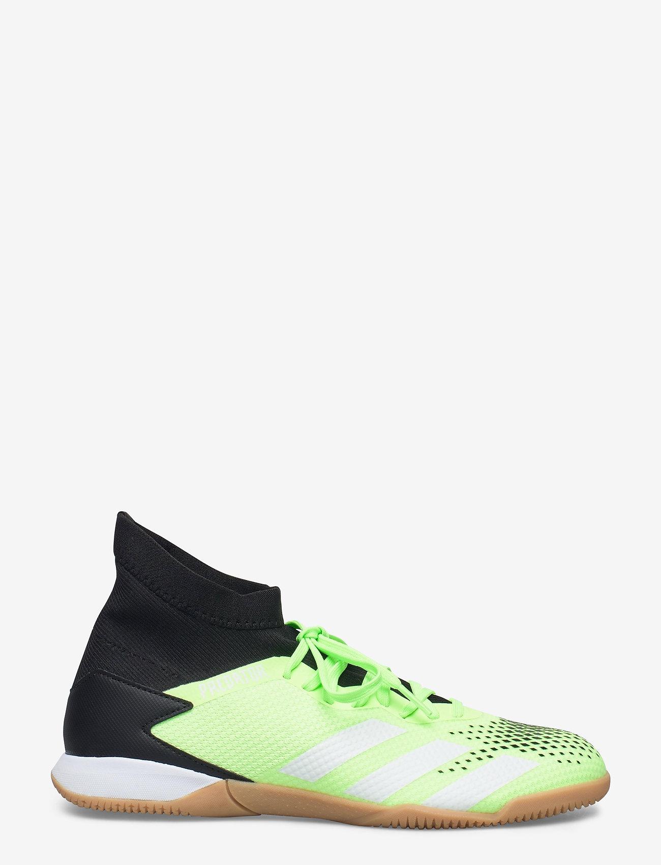 adidas Performance - PREDATOR 20.3 IN - fodboldsko - siggnr/cblack/ftwwht - 1