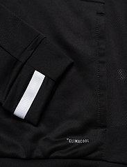 adidas Performance - T19 HOODY W - hupparit - black - 5