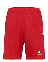 Team 19 Shorts - POWRED/WHITE