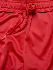adidas Performance - Team 19 Shorts - treningsshorts - powred/white - 5