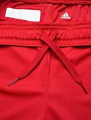 adidas Performance - Team 19 Shorts W - træningsshorts - powred/white - 2