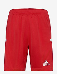 adidas Performance - Team 19 Shorts - treningsshorts - powred/white - 0