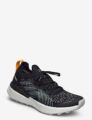 adidas Performance - TERREX TWO ULTRA PARLEY W - chaussures de randonnée - cblack/dshgry/bluspi - 0