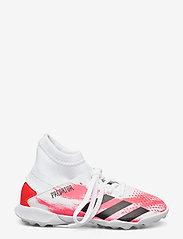 adidas Performance - PREDATOR 20.3 TF J - buty piłkarskie - ftwwht/cblack/pop - 1