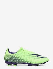 adidas Performance - X GHOSTED.3 FG - fotbollsskor - siggnr/eneink/siggnr - 1