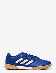 adidas Performance - COPA 20.3 IN SALA - fodboldsko - royblu/silvmt/royblu - 1