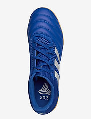 adidas Performance - COPA 20.3 IN SALA - fodboldsko - royblu/silvmt/royblu - 3