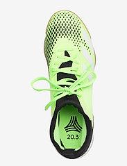 adidas Performance - PREDATOR 20.3 IN - fodboldsko - siggnr/cblack/ftwwht - 3