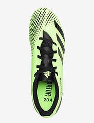 adidas Performance - PREDATOR 20.4 FxG - fotbollsskor - siggnr/cblack/siggnr - 3