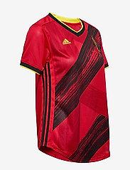 adidas Performance - Belgium 2020 Home Jersey W - football shirts - colred - 3