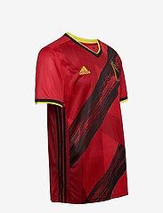 adidas Performance - Belgium 2020 Home Jersey - football shirts - colred - 4