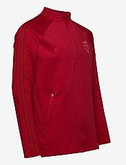adidas Performance - Arsenal Anthem Jacket - veste sport - actmar - 3