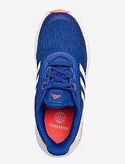 adidas Performance - EQ21 Running - schuhe - royblu/ftwwht/solred - 3