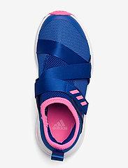 adidas Performance - Fortarun X - schuhe - royblu/sopink/ftwwht - 3