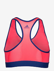 adidas Performance - DRST ASK SP BRN - sport bras: medium - sigpnk/royblu - 2