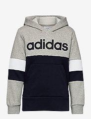 adidas Performance - YB LIN CB HD FL - kapuzenpullover - mgreyh/legink/legink - 0