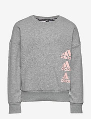 adidas Performance - JG MH CREW - sweatshirts - mgreyh/hazcor - 0