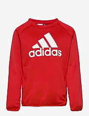 adidas Performance - Designed To Move Big Logo Sweatshirt - sweatshirts - vivred/white - 0