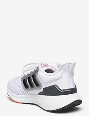 adidas Performance - EQ21 Run - löbesko - ftwwht/cblack/gresix - 2