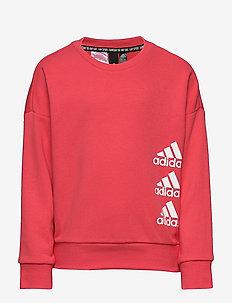 JG MH CREW - sweatshirts - corpnk/white