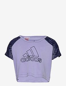 Designed To Move Seasonal Tee W - short-sleeved t-shirts - vioton/orbvio/legink