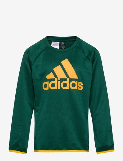 Designed To Move Big Logo Sweatshirt - sweatshirts - cgreen/sesogo