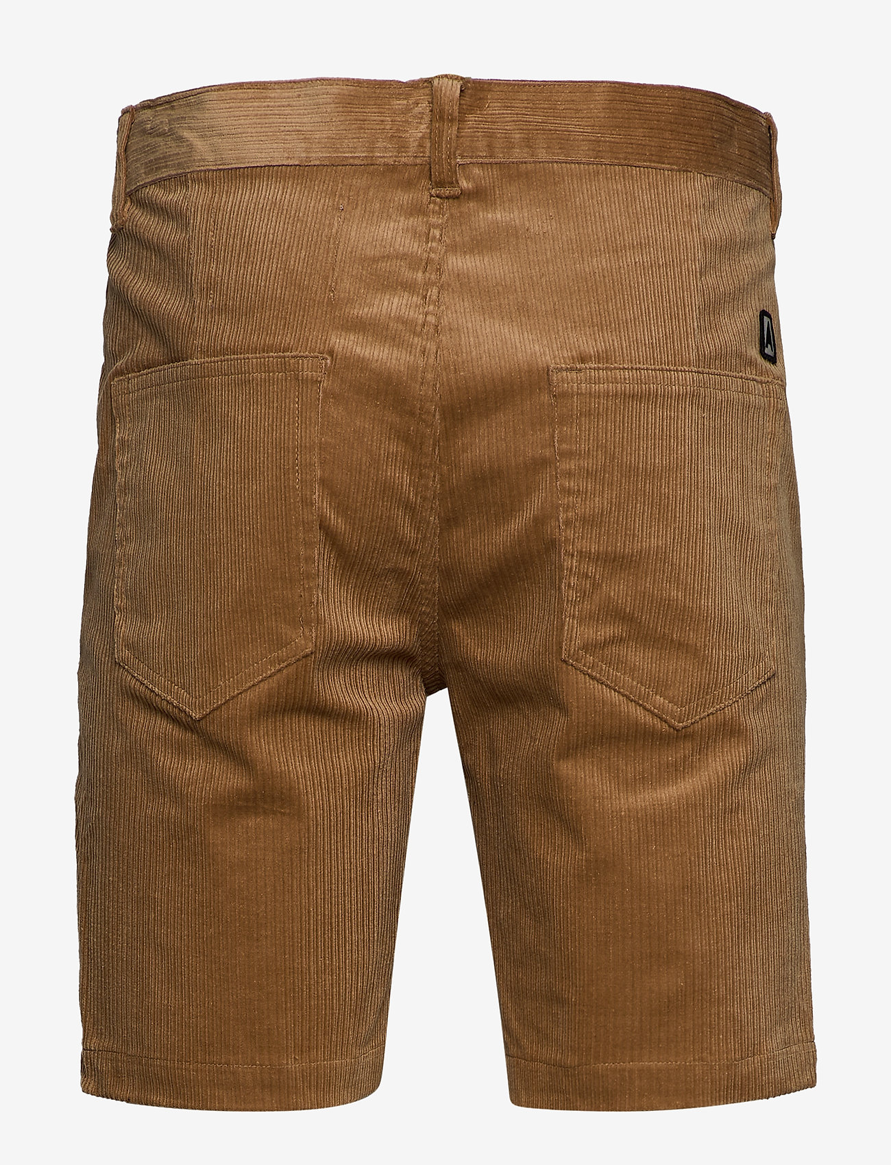 Anerkjendt Akcarlo Shorts -