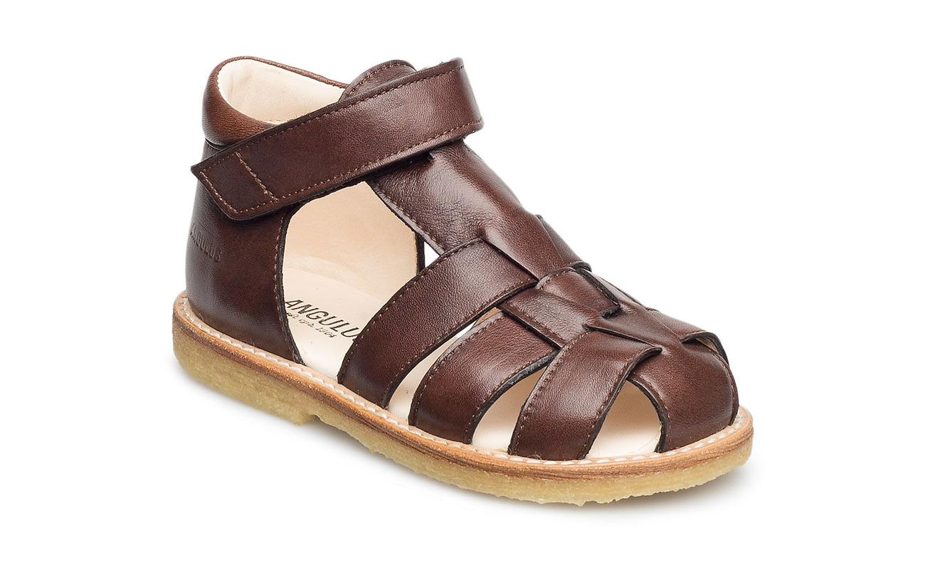 ANGULUS Baby sandal - 1562 ANGULUS BROWN