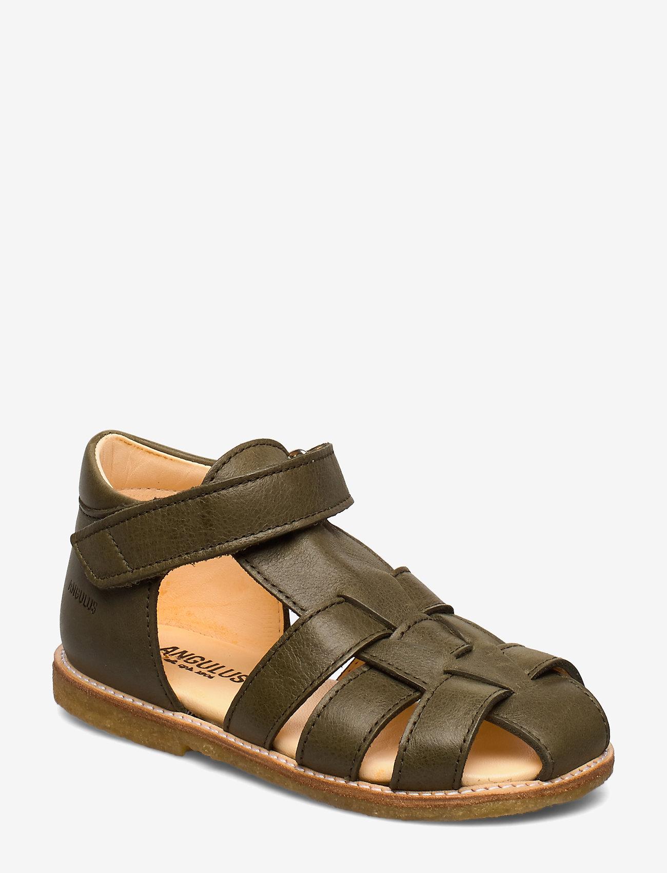 ANGULUS - Baby sandal - sandals - 2638 khaki - 0