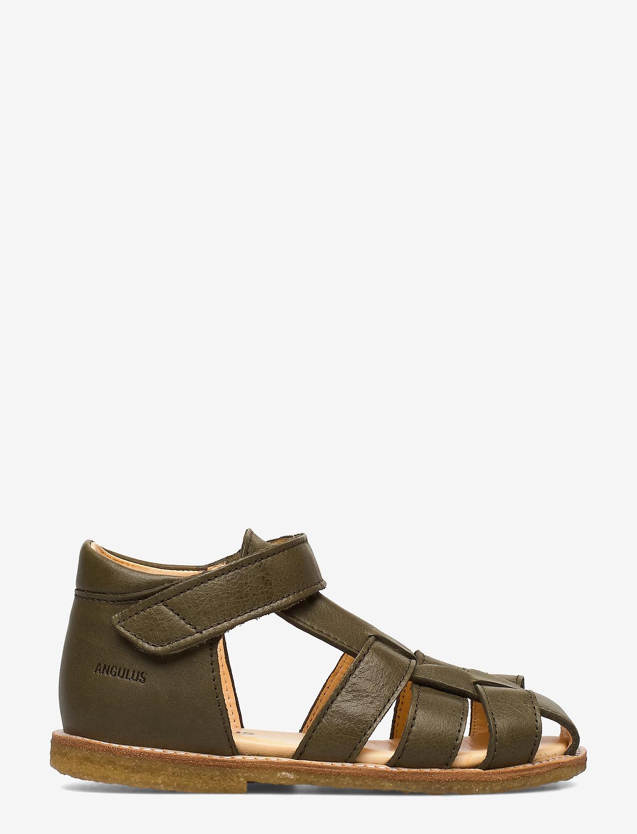 ANGULUS - Baby sandal - sandals - 2638 khaki - 1