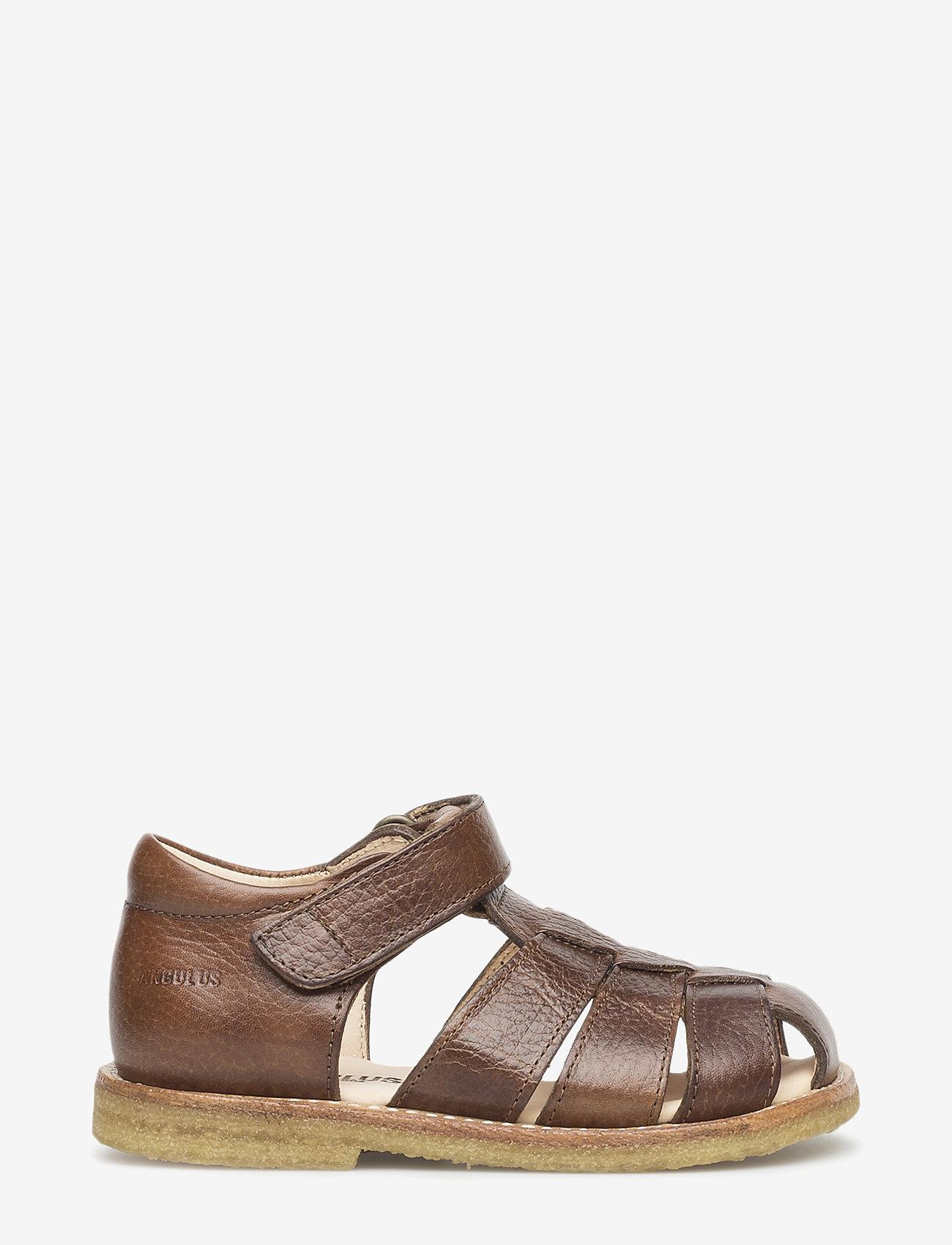 ANGULUS - Sandals - flat - closed toe -  - remsandaler - 2509 cognac - 1
