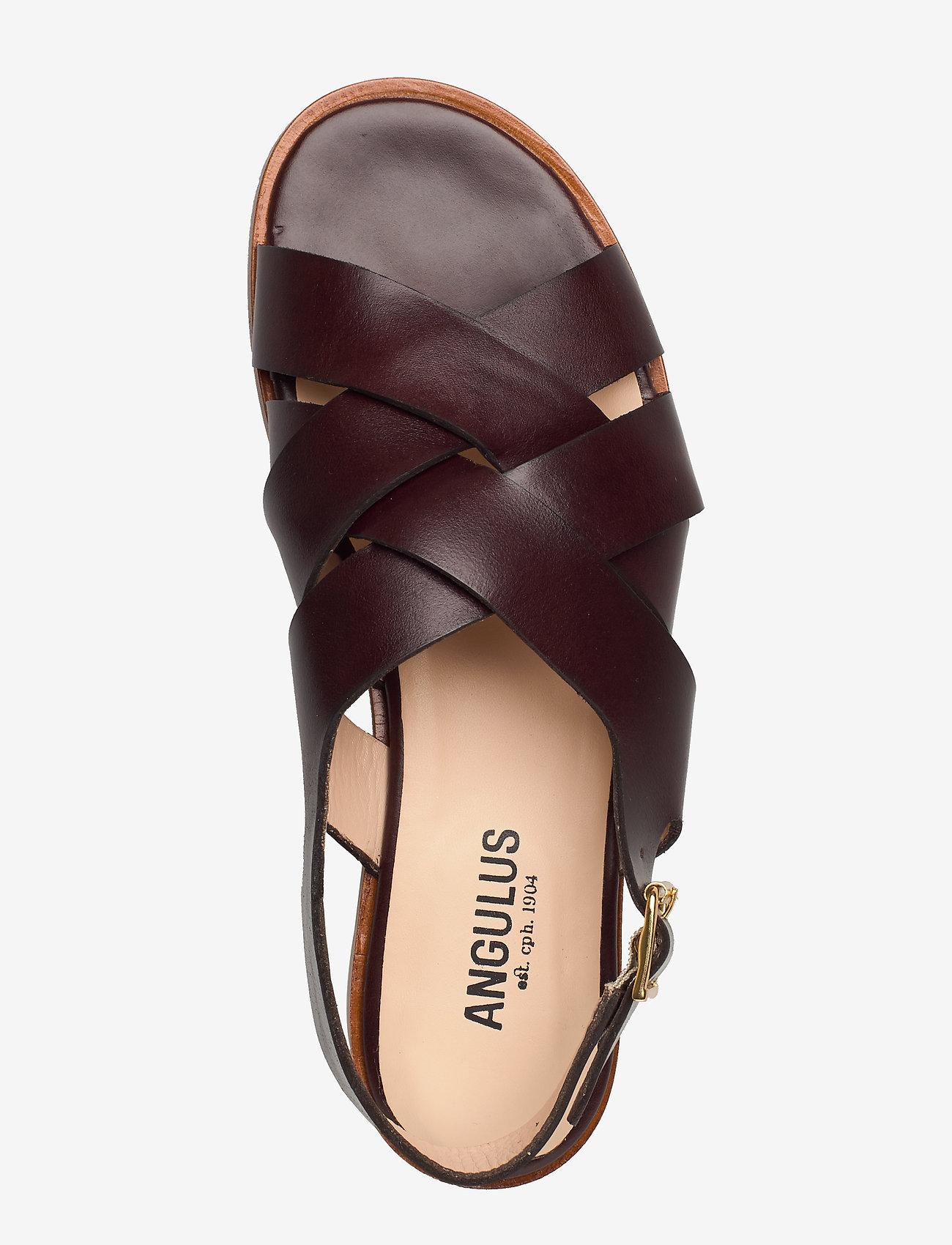 ANGULUS  Sandals - flat - open toe - op - Sandalen