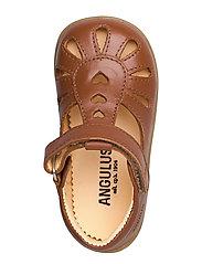 ANGULUS - Sandals - flat - closed toe -  - lauflernschuhe - 1431 cognac - 3
