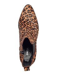 ANGULUS - Booties - Block heel - with elas - ankelstøvler med hæl - 1110/019 leopard/elastic - 4