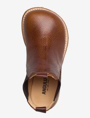 ANGULUS - Chelsea boot - støvler - 2509/002 medium brown/medium b - 3