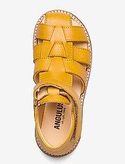 ANGULUS - Baby shoe - lauflernschuhe - 1544 yellow - 3